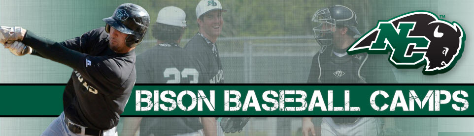 Nichols College Baseball Camps